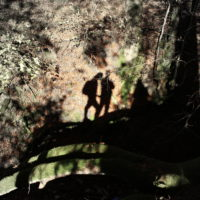 2. Begegnung mit mir selbst Schattenaspekt